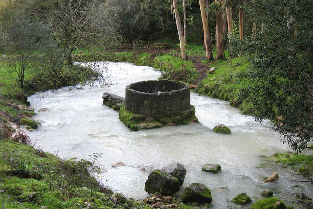 Source of the River Lis in the Cortes, Leiria