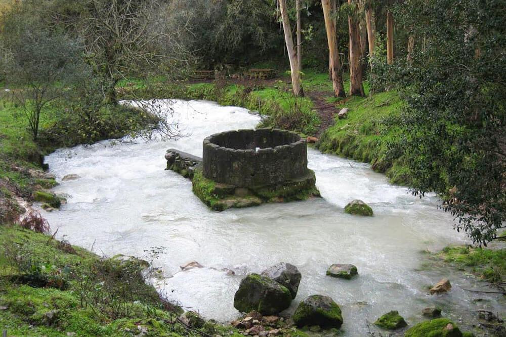 Nascente do Rio Lis nas Cortes, Leiria